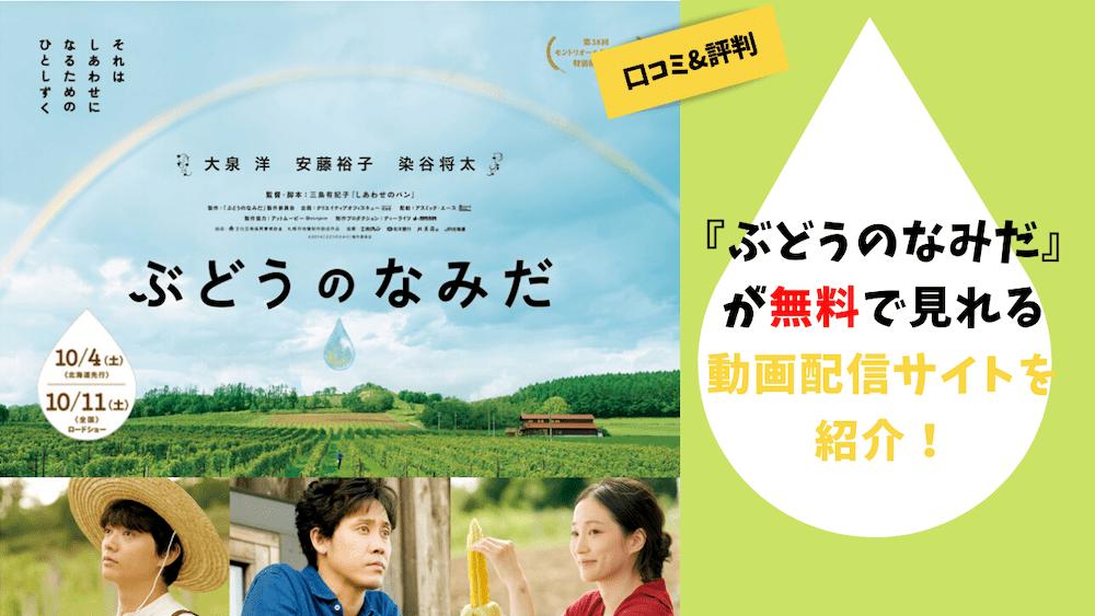 映画『ぶどうのなみだ』が無料で見れる動画配信サイトを紹介!