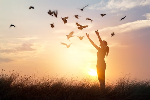 自由を感じる女性の画像